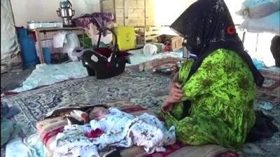 findik toplama -  Mevsimlik fındık işçilerinin zorlu yaşam mücadelesi