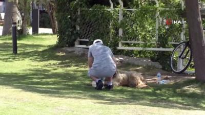 hava sicakligi -  Antalya'da termometreler 42 dereceyi gösterdi