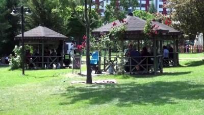 Park ve bahçelerde kene ilaçlaması