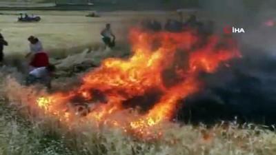 Anız yangını ekili tarlalara sıçradı: 400 dönüm buğday alev alev yandı
