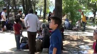 multeci -  Ayvalık'ta 51 Afgan mülteci yakalandı