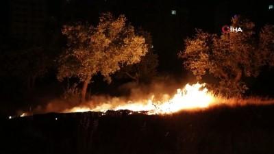 zeytinlik -  Havai fişekler yangına sebep oldu