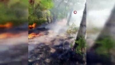 Gebze'de orman ve çalılık alan yangını