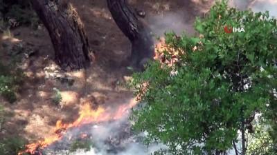 yabanci turist -  Fethiye'de orman yangını