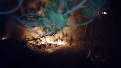 is makinesi -  Eskişehir'de orman yangını söndürme çalışmaları devam ediyor
