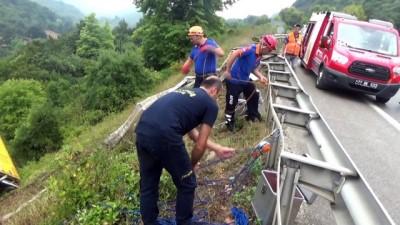 Tır 15 metreden aşağı uçtu, AFAD ekipleri yaralı sürücüyü uçuruma kurduğu ipli iniş sistemi ile kurtardı