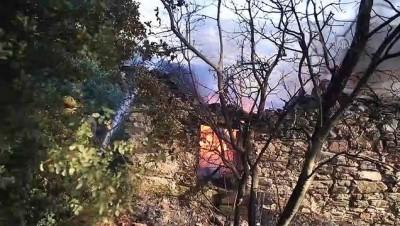 zeytinlik - Milas'taki orman yangını (7) - MUĞLA