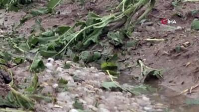 tarim arazisi -  Aksaray'da tarım arazilerini dolu ve sel vurdu