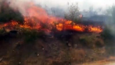 orman yangini - Kozluk'ta orman yangını - BATMAN