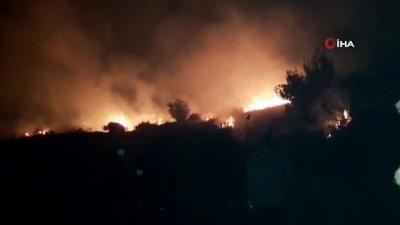 orman yangini -  Samandağ'da orman yangını