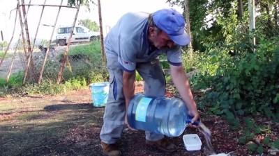 hayvan sevgisi - Sokak hayvanları için 11 yıldır su taşıyor - ORDU