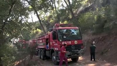 orman yangini - Marmaris'te orman yangını söndürüldü - MUĞLA
