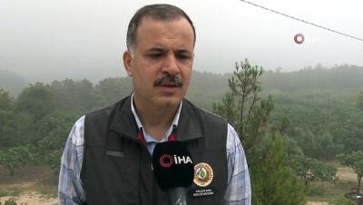 orman yangini -  Orhaneli ve Çivili'deki orman yangınlarında sabotaj iddiası