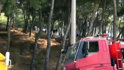 orman yangini - Orman yangınını vatandaşlar söndürdü - BALIKESİR