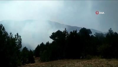 orman yangini -  Kütahya'daki ikinci orman yangını sürüyor