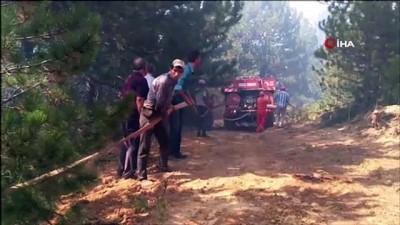 orman yangini -  Kütahya'daki orman yangını kontrol altına alındı