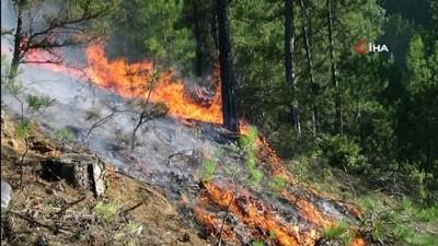orman yangini -  Uşak'ta çıkan orman yangını kontrol altına alındı