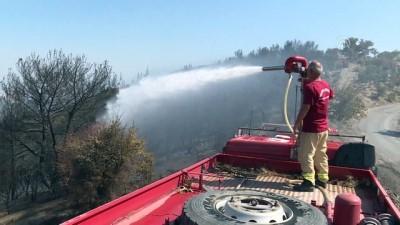 orman yangini - Yangın bitti 'nöbet' devam ediyor - İZMİR