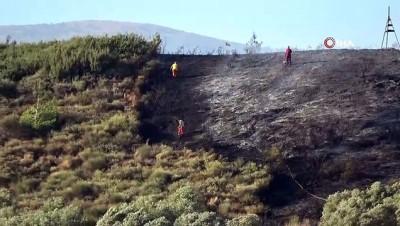 zeytinlik -  Hatay'da çıkan yangında 4 hektarlık alan kül oldu