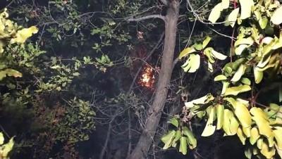makilik alan - Antalya'da çalılık yangını