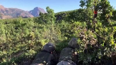 Siirt'te terör örgütü PKK'ya büyük darbe: 8 ayda 23 terörist etkisiz hale getirildi