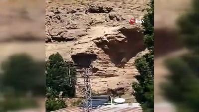 kurtarma operasyonu -  Kayalıklarda zorlu keçi kurtarma operasyonu