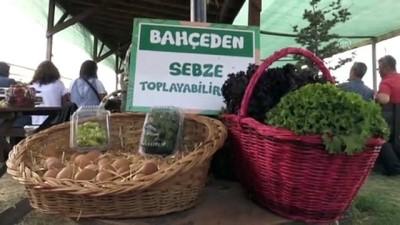 Çocukları için organik çilek ürettikleri bahçe geçim kaynakları oldu - ESKİŞEHİR