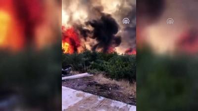 is makinesi - Bodrum'da orman yangını (2) - MUĞLA