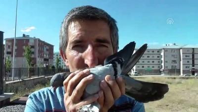 Kazalara rağmen kuş sevgisinden vazgeçmedi - ERZURUM