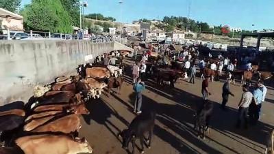 buyukbas hayvanlar -  Diyarbakır'da kurbanlık hareketliliği başladı...Kurban pazarı havadan görüntülendi