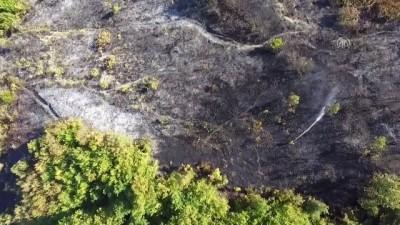 Bahçe temizliği anız yangınına yol açtı - KASTAMONU