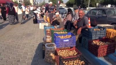 Germencik'te kuru incir hırsızlığını önleme çalışmaları - AYDIN