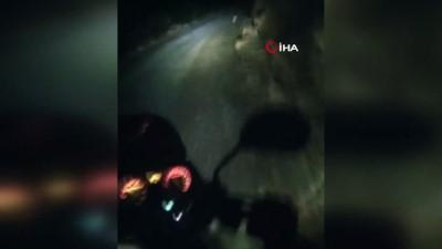 kabil -  Artvin'de şehre inen domuzlar motosiklete böyle çarptı