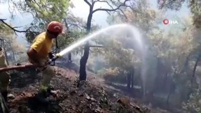 siddetli ruzgar -  Asırlık çam ağaçları alevlere teslim oldu