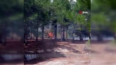 Kahramanmaraş'ta yangın: 5 hektarlık zeytinlik alan zarar gördü