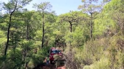 Orman yangını (4) - MUĞLA