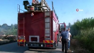 Antalya'da seraları tehdit eden sazlık yangını