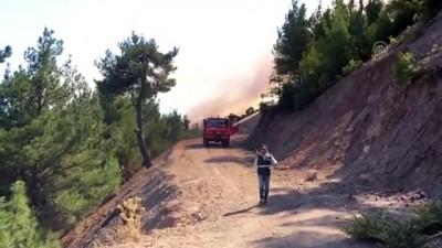 Buldan'da orman yangını - DENİZLİ