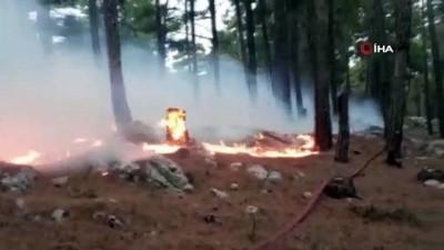 Manavgat Gülen Dağına düşen yıldırım yangın çıkarttı