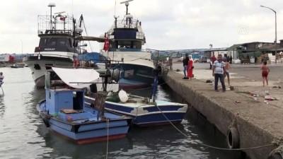 kirikli - Balıkçılar palamutta hayal kırıklığı yaşıyor - DÜZCE