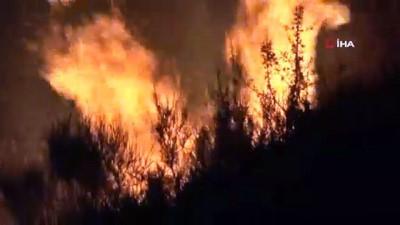 Bodrum'da Makilik alanda çıkan yangın korkuttu