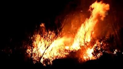 makilik alan - Bodrum'da makilik alanda yangın - MUĞLA