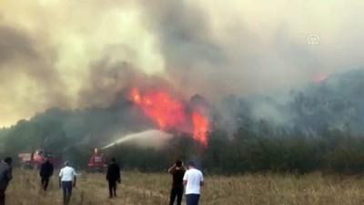 makilik alan - Makilik alanda yangın kontrol altına alındı - BİLECİK