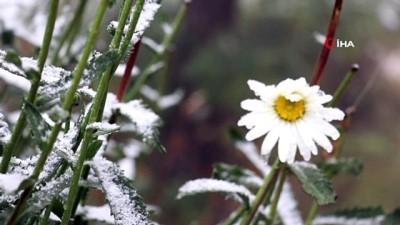 Gümüşhane'ye ilk kar düştü, Limni Gölü Tabiat Parkı manzarasıyla hayran bıraktı