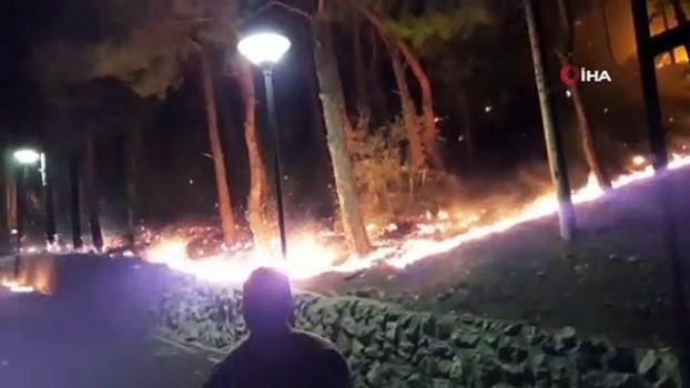zeytinlik -  Tarihi Kozan Kalesi'ndeki yangında 3 dekar alan zarar gördü