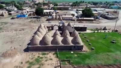 tarihi mekan - Harran'da turist yoğunluğu yüzleri güldürüyor - ŞANLIURFA