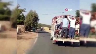 Trafikte güvelik önlemi olmadan mevsimlik tarım işçilerini böyle taşıdılar