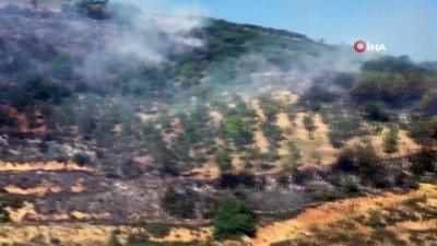 makilik alan -  Bursa'da korkutan orman yangını