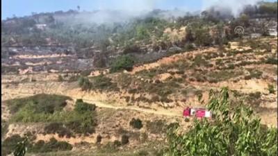 makilik alan - Bursa'da makilik alanda yangın