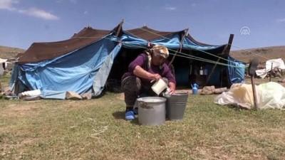 Doğu'daki yaylalarda göçerlerin dönüş hazırlığı başladı - AĞRI
